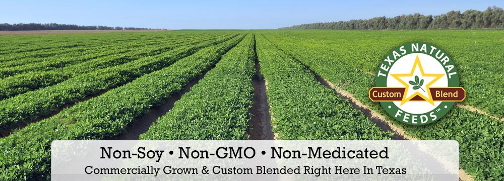 Non-Soy Non-GMO Feeds