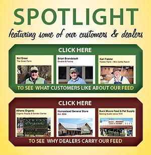 spotlight-web-blurb-home_pg